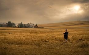 Picture field, nature, child
