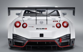 Picture GTR, Nissan, GT-R, racing car, spoiler, rear view, GT3, 2018, Nismo