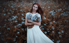 Picture field, look, girl, flowers, Adi Dekel