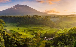 Picture Indonesia, rice fields, the island of Bali, Agung