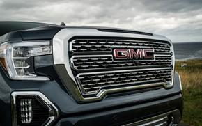Picture grille, pickup, GMC, Denali, Sierra, 2019