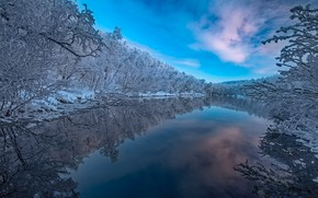 Picture winter, forest, trees, reflection, river, Finland, Finland, Lapland, Lapland, Kaamasjoki River