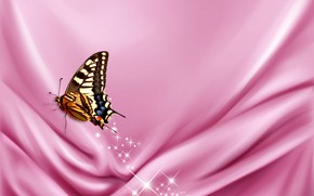 Picture butterfly, sparkle, velvet, satin, pink cloth
