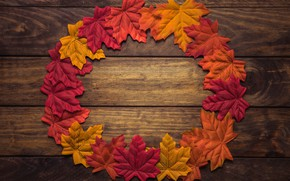 Picture autumn, leaves, creative, background, Board, round, colorful, maple