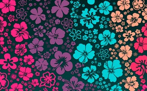 Picture flowers, background, flowers, color