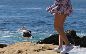 Picture GIRL, SEA, DRESS, FEET, SEAGULL, SNEAKERS
