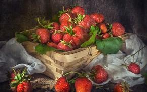 Picture berries, strawberry, basket, gauze, Vladimir Volodin