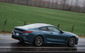 Picture field, coupe, BMW, wet asphalt, 2018, 8-Series, 2019, pale blue, M850i xDrive, Eight, G15