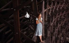 Wallpaper girl, bridge, rat