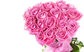 Picture roses, bouquet, beautiful