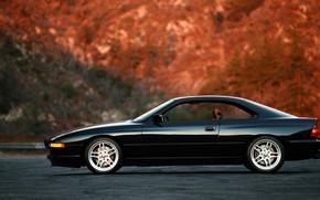Picture BMW, E31, 850ci, 8-Series
