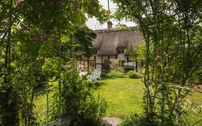 Picture England, garden, yard, cottage, Cotswolds, luxury cottage, Worcestershire, Birlingham cottage, Birlingham