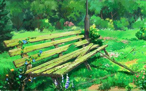 Picture green grass, shop, wildflowers, in the Park, bindweed, wooden bench, abandoned area, by lv