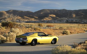 Picture Road, The bushes, Drives, Muscle car, 1972, Classic car, Sports car, AMC, AMC Javelin, By …
