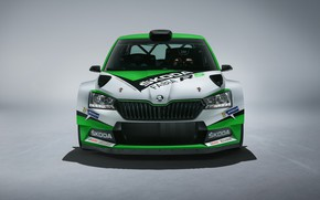 Picture Concept, front view, Skoda, 2019, Fabia R5
