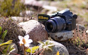Picture the camera, Nikon, photography