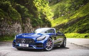 Picture Roadster, Mercedes-Benz, AMG, 2019, GT C