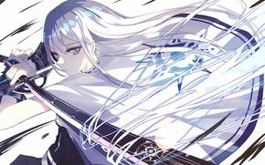 Picture girl, sword, long hair