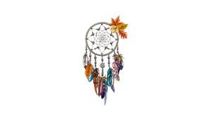 Picture feathers, Dreamcatcher, Dreamcatcher