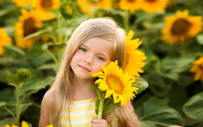 Picture look, face, mood, sunflower, girl