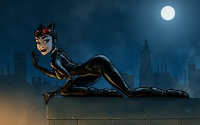 Picture Night, The moon, Latex, Art, Cat woman, DC Comics, Catwoman, DC Art, Trinquétte Challenge - …