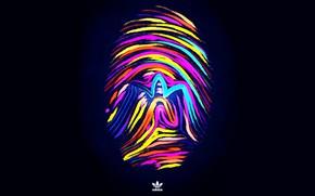 Picture logo, logo, adidas, imprint, fon, fingerprint