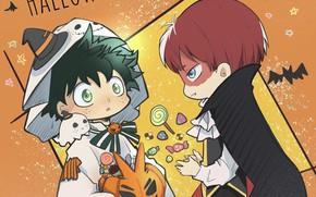 Picture boys, costumes, Halloween, My Hero Academia, Boku No Hero Academy, Midori Isuku, Todoroki Shoto, My …