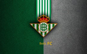 Picture wallpaper, sport, logo, football, Primera Division, Real Betis