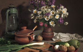 Picture lamp, chamomile, bow, vegetables, potatoes