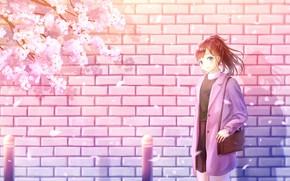 Picture girl, wall, spring, Sakura, brick wall