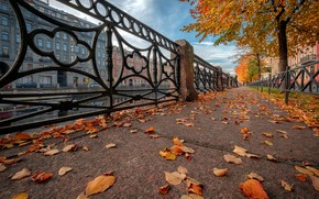 Picture autumn, leaves, the city, river, street, home, Peter, Sink, Saint Petersburg, the sidewalk, Andrei