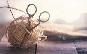 Picture macro, thread, scissors