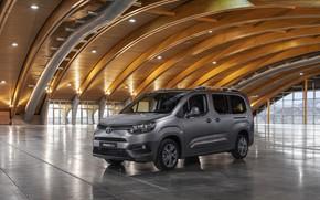 Picture auto, photo, Toyota, 2019, City Verso Long, ProAce