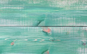 Picture color, structure, wood, texture