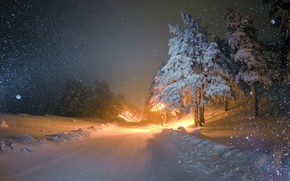 Picture Winter, Night, Snow, Winter, Night, Snow, Winter landscape, Winter Landscape, Снежные деревья, Snow Trees