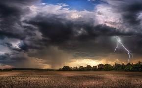 Wallpaper the storm, field, summer, clouds