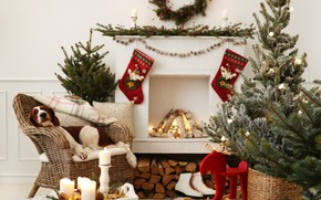 Picture decoration, balls, tree, dog, Christmas, gifts, New year, snowman, christmas, balls, puppy, dog, decoration, gift …