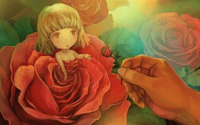 Picture rose, hand, fairy, girl