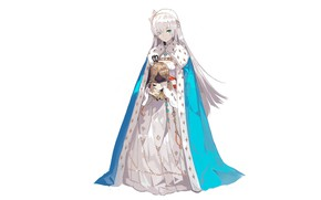 Picture girl, mantle, Princess, Queen, Fate / Grand Order, The destiny of a great campaign