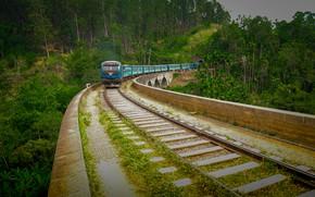 Picture nature, people, man, thanujan, thanujan thanabalasingam, thanujan_t, thanujan13, srilanka