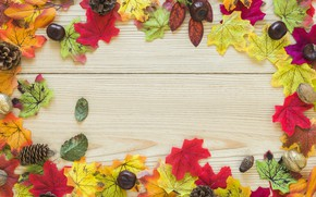 Picture autumn, leaves, background, Board, colorful, maple, wood, background, autumn, leaves, autumn, maple