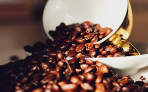 Picture Wallpaper, Coffee beans, Mug