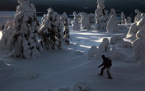 Picture winter, snow, trees, landscape, nature, people, ate, shadows, The Arctic, Kandalaksha