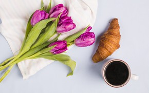 Picture coffee, bouquet, purple, tulips, croissant