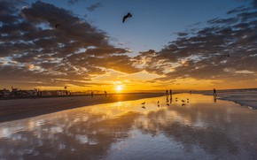 Picture sea, beach, the sky, the sun, clouds, sunset, birds, people, coast, horizon, CA, USA, Newport …