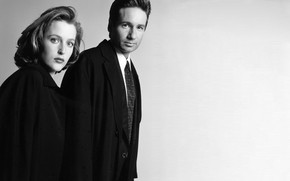 Picture the series, The X-Files, Classified material, Dana, Малдер