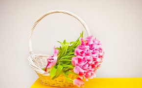 Picture table, tulips, basket