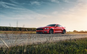 Picture Mustang, Ford, 2018, Mustang GT, by Jimmy Zhang