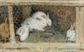 Picture animals, picture, cell, Rabbits, Pierre Eugène Montesin, Pierre-Eugene Montezin