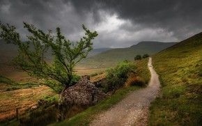 Picture clouds, overcast, path